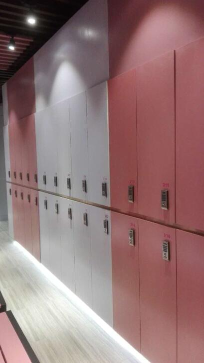 DEBO® MDF locker system design for fema...